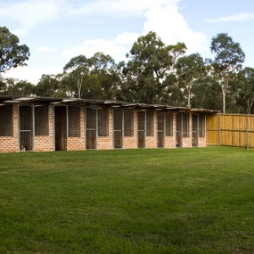 Sydney Dog & Cat Boarding Kennels